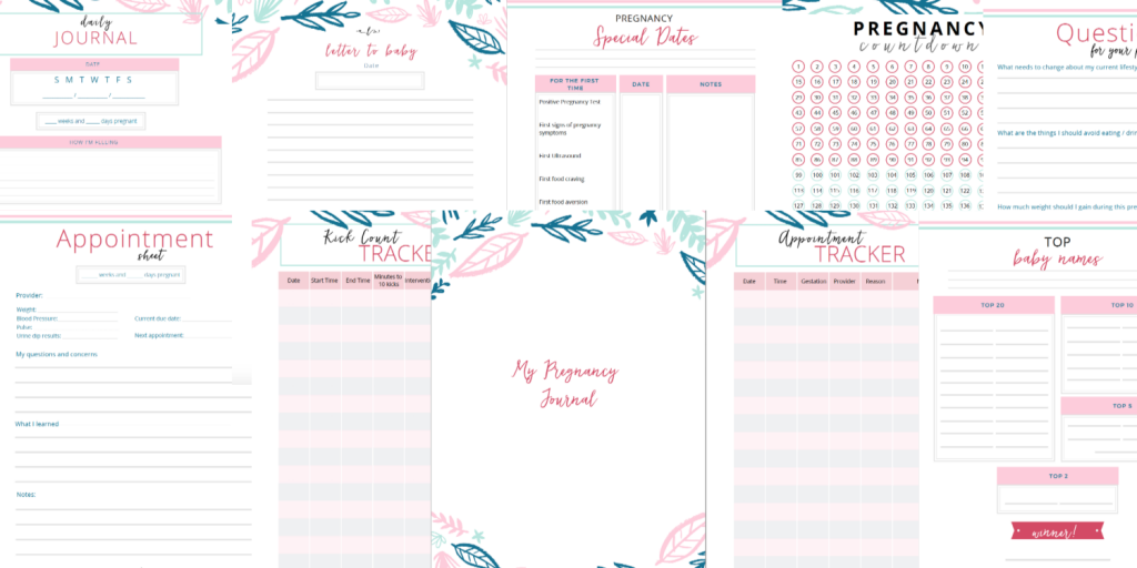 Pregnancy preparation Journal