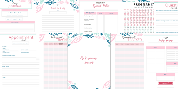 Pregnancy preparation Journal